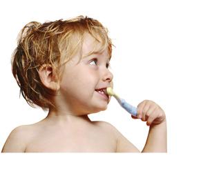 gesunde zähne lebenslang